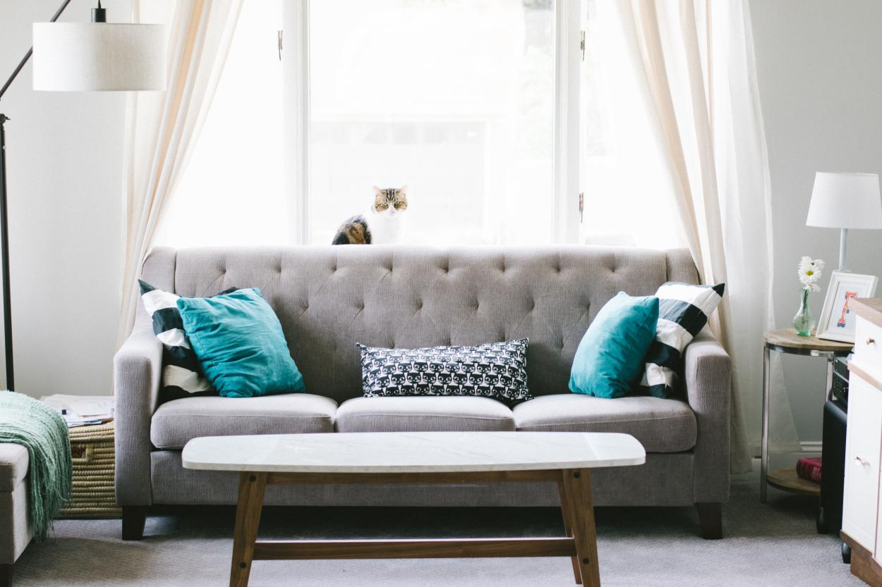 Budget Decor Ideas